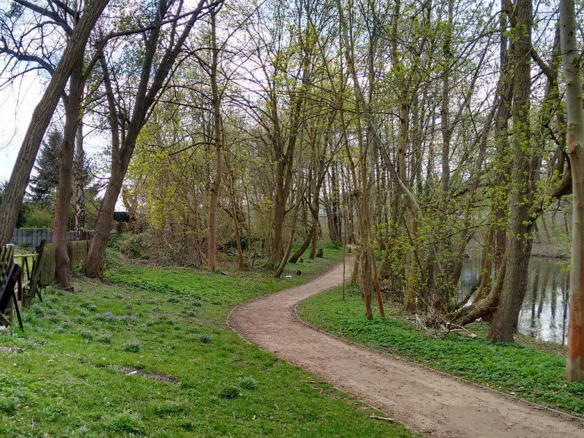 Spazierweg unter Bäumen